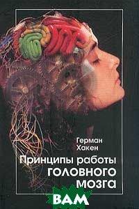 Принципы работы головного мозга. Синергетический подход к активности мозга, поведению и когнитивной деятельности