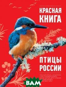Купить Красная Книга. Птицы России