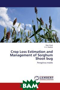 Crop Loss Estimation and Management of Sorghum Shoot bug