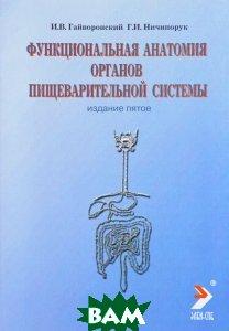 Функциональная анатомия органов пищеварительной системы. Строение, кровоснабжение, иннервация, лимфоотток. Учебное пособие