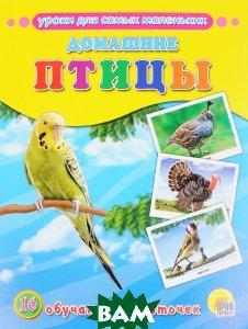 Обучающие карточки. Домашние птицы
