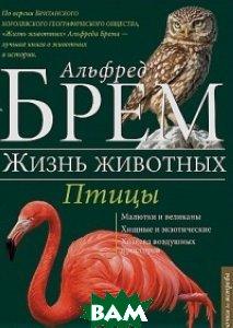 Жизнь животных. Птицы. От ласточки до ястреба