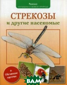 Стрекозы и другие насекомые + обучающие карточки