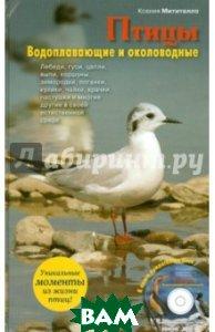 Купить Птицы. Водоплавающие и околоводные (+CD), ЭКСМО, Митителло Ксения Борисовна, 978-5-699-52790-8