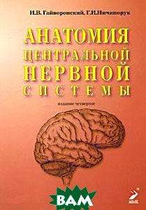 Купить Анатомия центральной нервной системы. Краткий курс. Учебное пособие, ЭЛБИ-СПб, И. В. Гайворонский, Г. И. Ничипорук, 978-5-93979-142-7