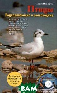 Птицы. Водоплавающие и околоводные (+ CD-ROM), ЭКСМО, Митителло Ксения Борисовна, 978-5-699-57387-5  - купить со скидкой