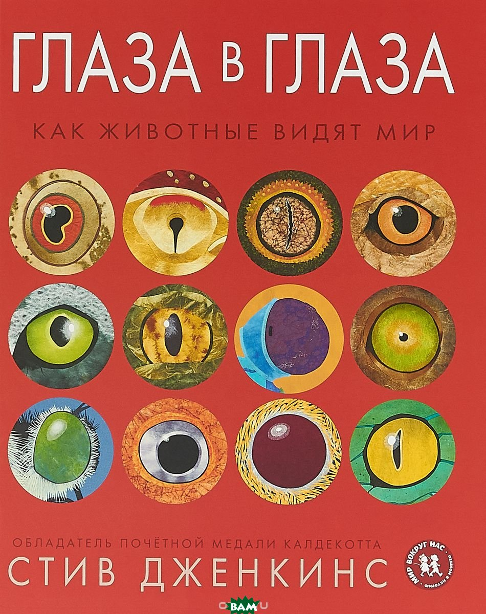 Глаза в глаза. Как животные видят мир, Пешком в историю, Дженкинс Стив, 978-5-905474-99-6  - купить со скидкой