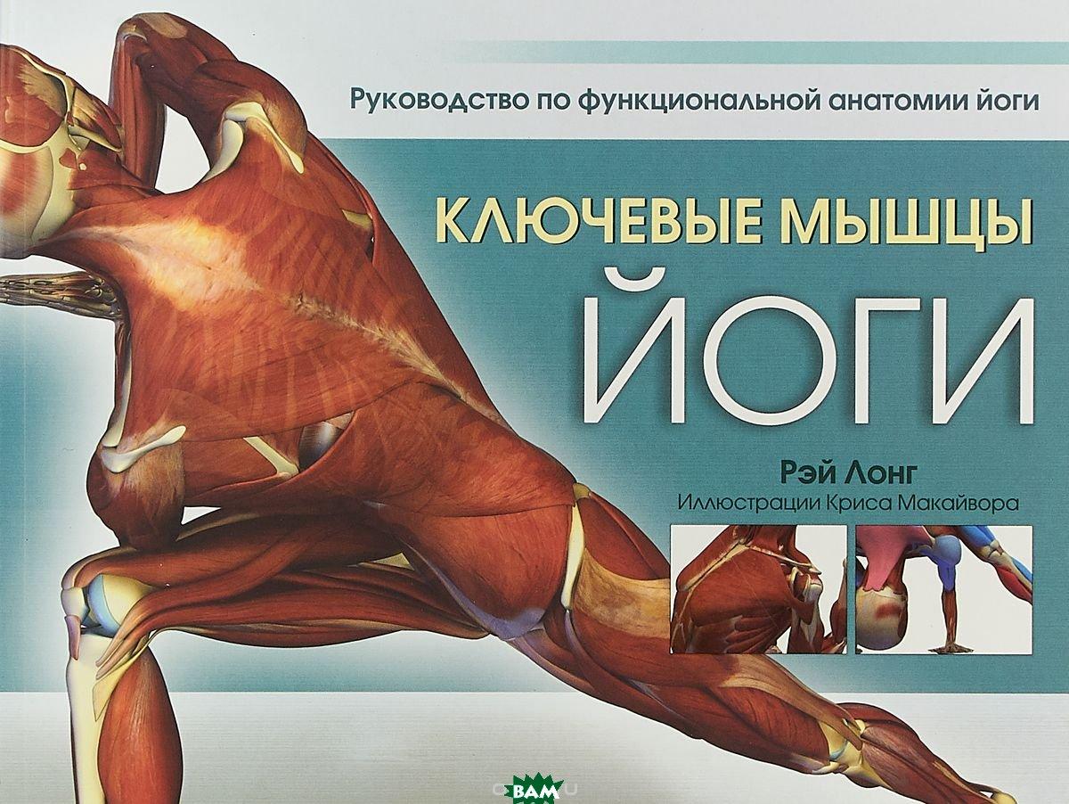 Купить Ключевые мышцы йоги, ПОПУРРИ, Лонг Рэй, 978-985-15-3527-5