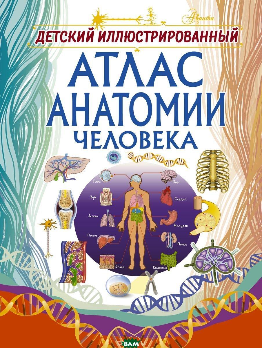 Купить Детский иллюстрированный атлас анатомии человека, АСТ, Спектор Анна Артуровна, 978-5-17-109986-2